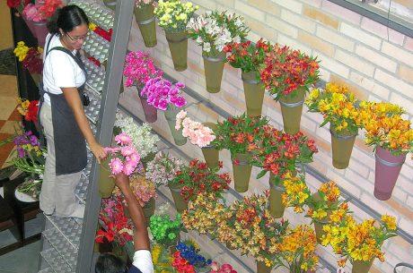 Aflora-floristeria-online-venezuela-ecuador-02-1.jpg