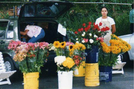 Aflora-floristeria-online-venezuela-ecuador-1.jpg